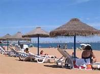 Comunicado de la Asociación de Empresarios de Playa de Las Américas y Costa Adeje (A.E.P.A.C.A.)