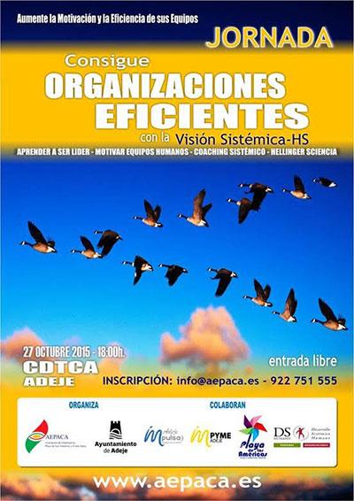 """Jornada """"CONSIGUE ORGANIZACIONES EFICIENTES, con la Visión Sistémica HS"""""""